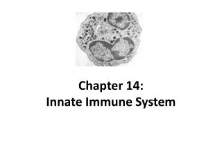 Chapter 14: Innate Immune System