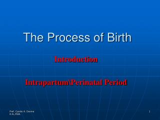The Process of Birth