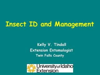 Insect ID and Management