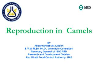 Reproduction in  Camels