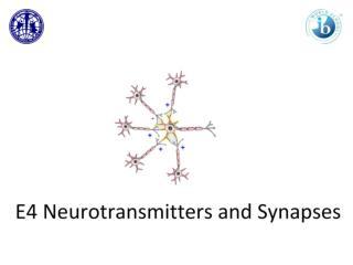 Communication via Synapses