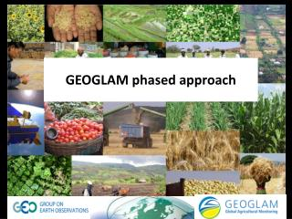 GEOGLAM phased approach