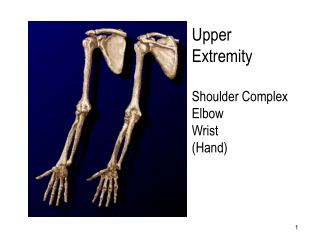 Upper Extremity  Shoulder Complex Elbow Wrist Hand