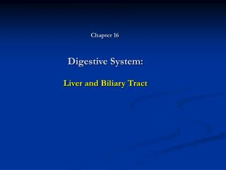 Digestive System: Liver and Biliary Tract