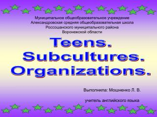 Teens.  Subcultures. Organizations.