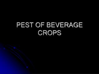PEST OF BEVERAGE CROPS
