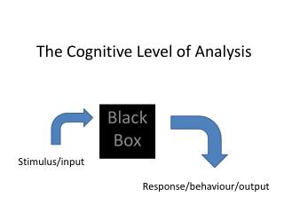 The Cognitive Level of  Analysis