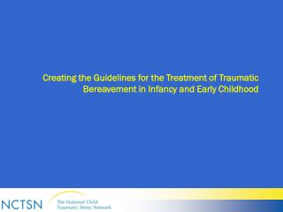Creating the Guidelines for the Treatment of Traumatic Bereavement in Infancy and Early Childhood