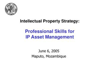 Intellectual Property Strategy: Professional Skills for  IP Asset Management