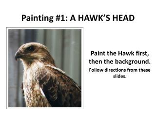 Painting #1: A  HAWK'S HEAD
