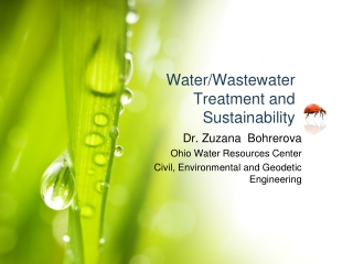 Safe Wastewater Reuse:  Current  future perspective