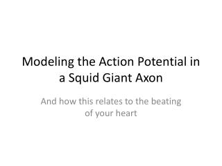 Modeling the Action Potential in a Squid Giant Axon