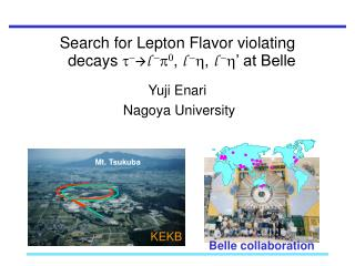 Search for Lepton Flavor violating   decays  t -  l  - p 0 ,  l  - h ,  l  - h ' at Belle