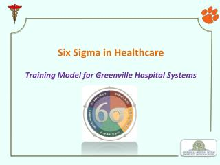 Six Sigma in Healthcare Training Model for Greenville Hospital Systems