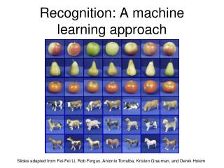 Recognition: A machine learning approach