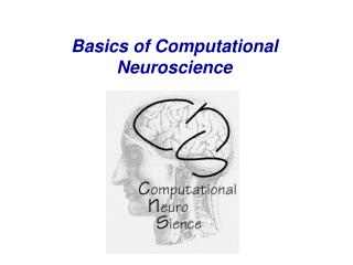 Basics of Computational Neuroscience