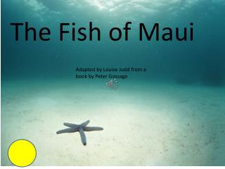 The Fish of M aui