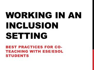 Working in an Inclusion Setting