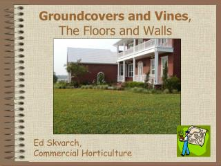 Groundcovers and Vines ,  The Floors and Walls