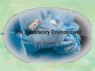 The Laboratory Environment