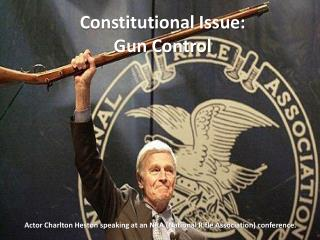 Constitutional Issue: Gun Control