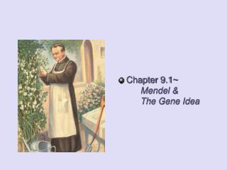 Chapter  9.1~ Mendel & 		The Gene Idea