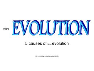 5 causes of   Micro evolution (Animated activity-Campbell 23A)