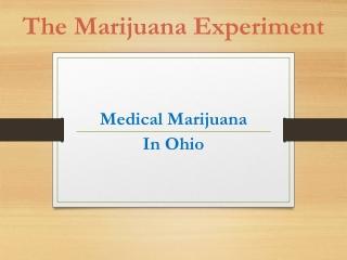 The Marijuana Experiment