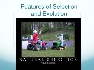Features of Selection and Evolution