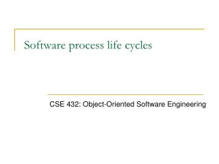 Software process life cycles