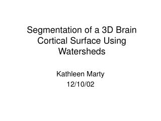 Segmentation of a 3D Brain Cortical Surface Using Watersheds