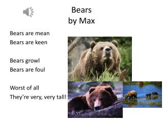 Bears  by Max