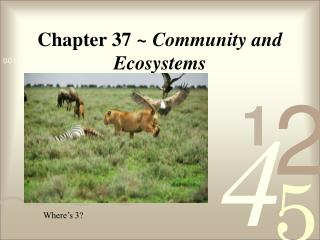 Chapter 37  ~ Community and Ecosystems