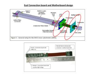 Ecal Connection board and Motherboard design