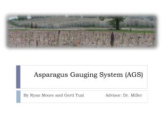 Asparagus Gauging System (AGS)