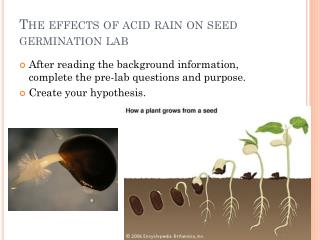 The effects of acid rain on seed germination lab