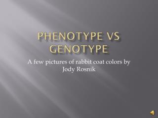 Phenotype vs Genotype