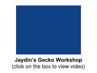 Jaydin's Gecko Workshop (click on the box to view video)