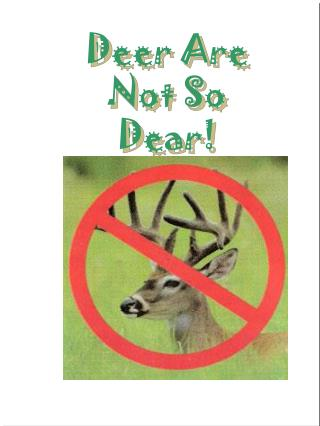 Deer Are Not So Dear!