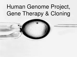 Human Genome Project, Gene Therapy & Cloning