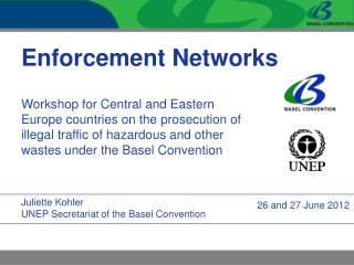 Enforcement Networks