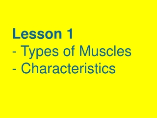 Developmental Aspects of Muscular System