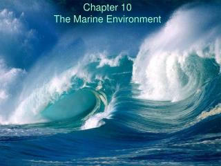 Chapter 10 The Marine Environment