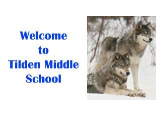 Welcome  to  Tilden Middle School