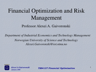 Financial Optimization and Risk Management