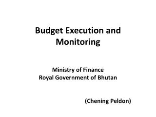 Budget Execution and Monitoring