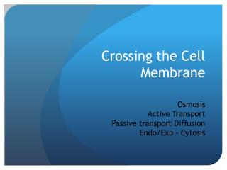 Crossing the Cell Membrane