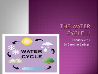 The Water Cycle!!!