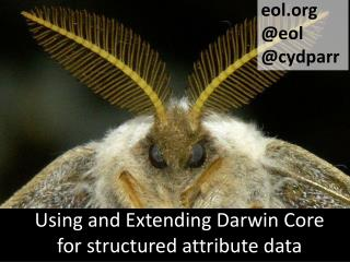 Using and Extending Darwin Core for structured attribute data