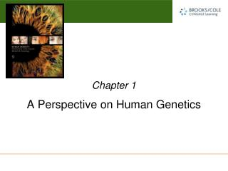 A Perspective on Human Genetics